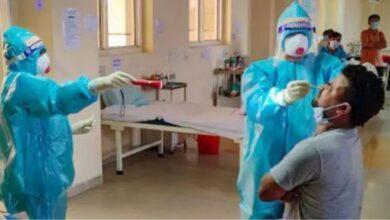 गायत्री मंत्रानंतर आता Chyawanprash कोविड-19 च्या तीव्र संक्रमणापासून संरक्षण देत असल्याचा दावा; जाणून घ्या काय सांगतो अभ्यास